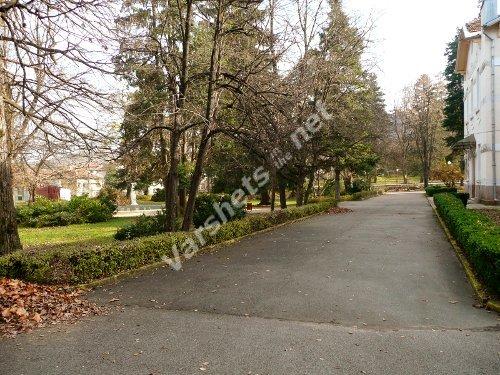 Есен във Вършец - Пред Старата баня - Вършец