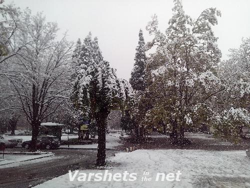 Първи сняг - Вършец
