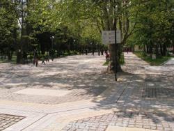 Алеята с чинарите - Вършец
