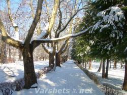 Вършец през зимата