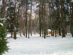 Градският парк - Вършец