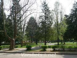 Пролет във Вършец, Слънчевата градина - Вършец