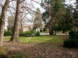 Есен във Вършец - Парка пред Старата баня - Вършец