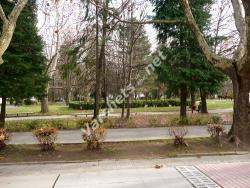Есен във Вършец - Слънчевата градина - Вършец