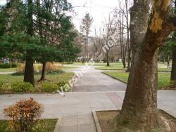 Есен във Вършец - Вършец